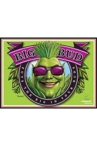 Big Bud Bloom Booster Powder - 1kg