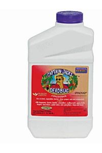 Captain Jacks Deadbug Brew Concentrate - 1 quart