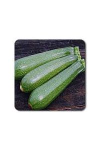 Dark Green Zucchini Squash seeds - 1/8 oz