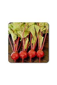 Detroit Dark Red Beet seeds - 1/16 oz