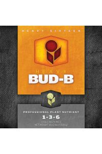 Heavy 16 Bud Part B - 1 quart