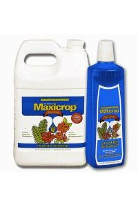 Maxicrop Liquified Seaweed Plus Iron - 1 gallon