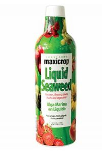 Maxicrop Liquified Seaweed - 1 gallon