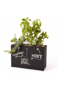 Modern Sprout Kitchen Hydroponics System - Chalkboard