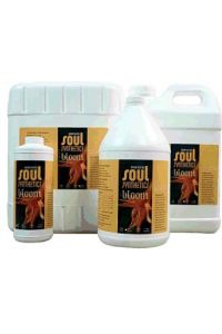 Soul Bloom - 1 gallon